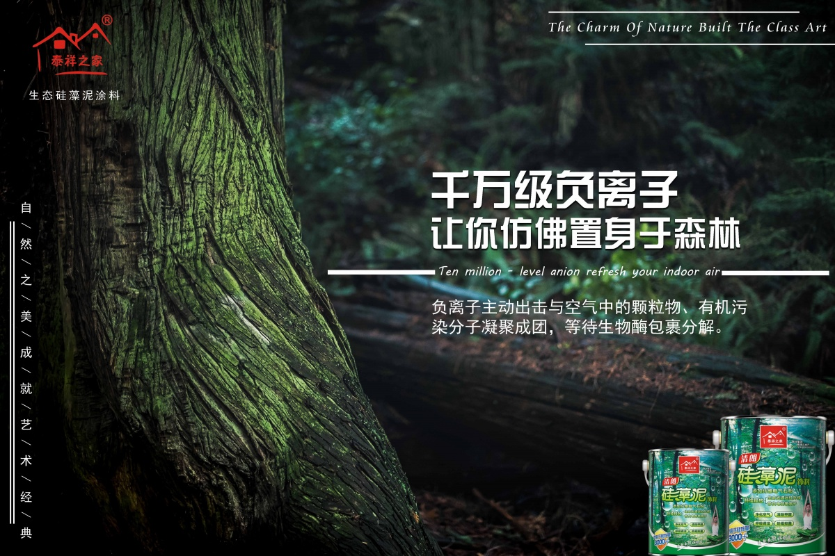 daylight-environment-forest-733534 拷贝_副本.jpg